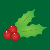 Christmas Holly Mistletoe Mistle Toe